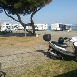Photo de Camping La Focetta Sicula