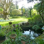 Ocklynge Manor Bed & Breakfast Foto