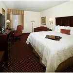 Hampton Inn Savannah -  I-95 North resmi