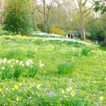 Magdalen College grounds