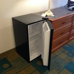 Fridge in Room