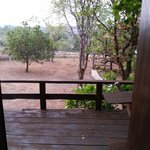 Foto de Nature Lodge