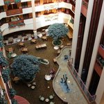 Photo de Embassy Suites San Marcos
