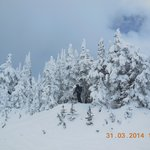 In Sun Peaks we love snow !