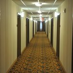 Foto di Country Inn & Suites Pineville