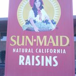 The Largest Raisin Box on earth