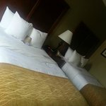 Comfort Inn & Suites Riverview Foto