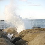 nearby blowhole