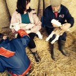Feeding orphan lambs with john the farmer
