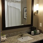 Foto Holiday Inn Express Hotel & Suites Utica