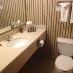 DFW Airport Marriott South照片