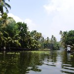 Alleppey 3 Palms Guesthouse Foto