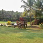 Royal Orchid Beach Resort & Spa, Goa resmi