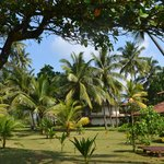 Photo de Kosgoda Beach Resort