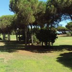 Photo de Hotel Nuevo Portil Golf