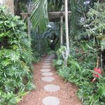 Path to the breakfast table next to the pool.