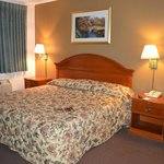 Econo Lodge at the Falls resmi