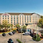 The Hilton Garden Inn Tampa North