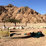 The Bedouin Way - Private Day Tours