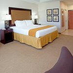 Billede af Holiday Inn Express Hotel & Suites Texas City