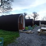 Foto de Box Tree Farm Camping Cabins
