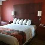 Residence Inn Youngstown Poland resmi