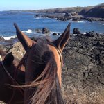 Horseback Riding on Playa de San Juanillo