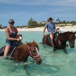 Provo Ponies - Riding Along Long Bay Beach