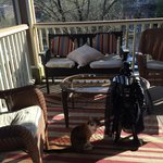 Lil Vader has a favorite cat, very sweet!