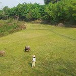 Chang Garden Resort - Family Holiday Park의 사진