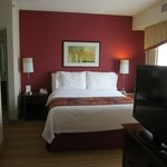 Residence Inn Chicago Schaumburg resmi