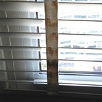 Stained rusted blinds