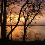 Kentucky Lakes / Prizer Point KOA의 사진