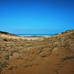 Coorong Wilderness Lodge의 사진