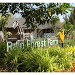 Photo de Rain Forest Resort
