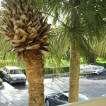 Photo de Extended Stay America - Fort Lauderdale - Tamarac