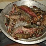 Fresh catch of the day... choose your prawns for your dinner.