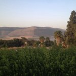Ein Harod Country Suites & Guesthouse Foto