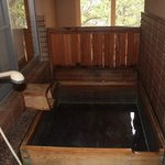 Private Onsen with the room