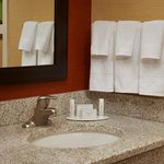 Φωτογραφία: Courtyard by Marriott Detroit Novi