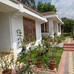 charming bungalows