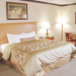 You'll love our well-appointed King Room!