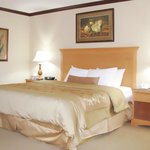 Our spacious, king guest room has all the comforts of home