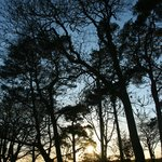 Rawcliffe House Farm Holiday Cottages and Studio Roomsの写真
