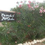 Photo of Paradis Nomade
