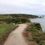 Cape Foulwind Lighthouse walk