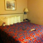 Φωτογραφία: Red Roof Inn Toledo - Maumee