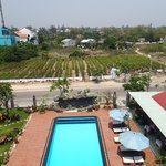View from Room 406 over the pool and tree farm