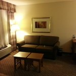 صورة فوتوغرافية لـ ‪Staybridge Suites Chantilly - Fairfax / Dulles Airport‬