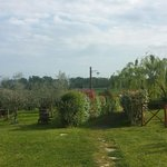 Country House Podere Lacaioli  I의 사진